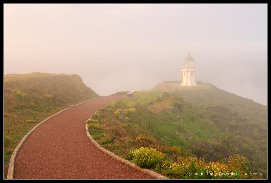 Fog at Cape Reinga